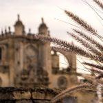 Chollos Hoteles Jerez de la Frontera - Catedral